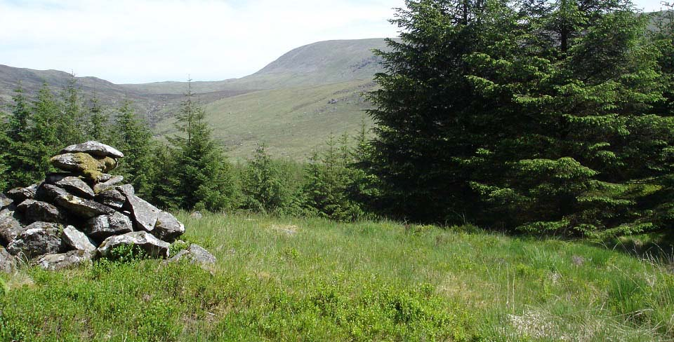 Kirriereoch Woodland Cairn image